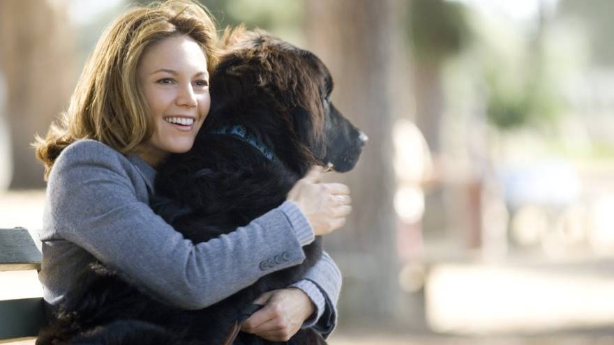 Frau mit Hund sucht… Mann mit Herz