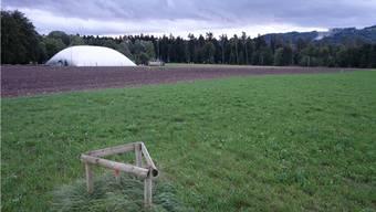 Auf dem Gebiet Tägerhard sollen vorerst keine Sportanlagen erstellt werden.