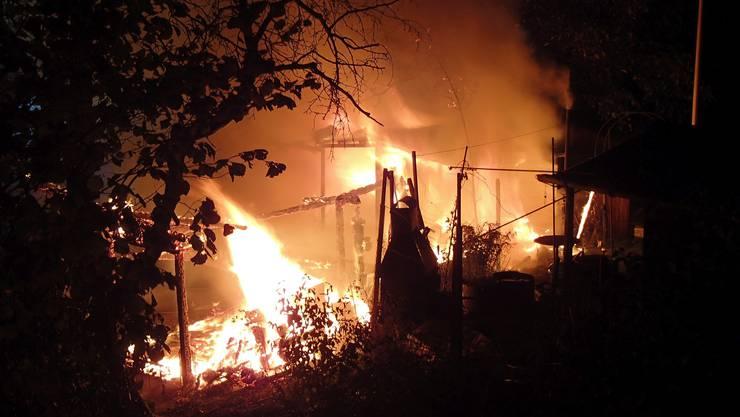 Warum es zum Brand in der Schrebergartenanlage kam, klärt der Brandermittler derzeit ab.