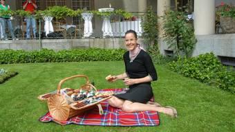 Picknick im Langmatt Park Baden