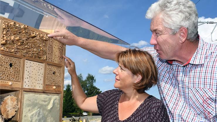 Monika Hochuli und Stefan Bürgler bei einem der Bienenhotels. tiz