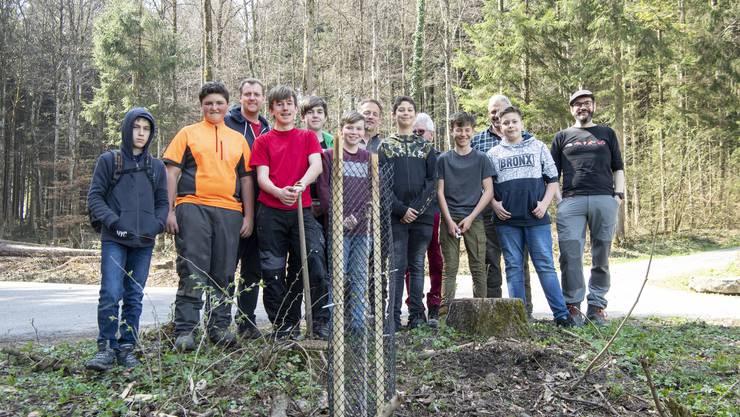 «Der Wald ist nicht genug»: Das ist der Titel des Workshops, den die Birmensdorfer Sekschüler gewählt haben.