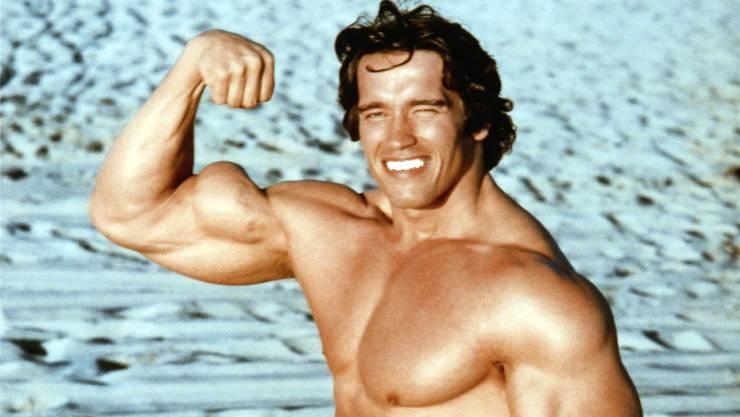Arnold Schwarzenegger im Film «Stay Hungry» (1976): Hungrige Muskelberge wie «Arnie» sollten auf den Proteinshake nach dem Training besser verzichten – der Effekt geht gegen null.Alamy