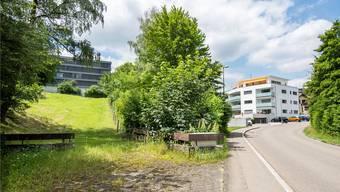 Der Rösernbach liegt verdeckt von Bäumen in der Mitte zwischen dem Bauland der Psychiatrie (l.) und dem Mehrfamilienhaus der Einsprecher (r.).Nicole Nars-Zimmer