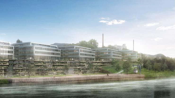 So dürfte sich das neue Gewerbe- und Freizeitgebiet «Rheinlehne» in wenigen Jahren präsentieren. Im Hintergrund der alte Salinen-Schornstein.