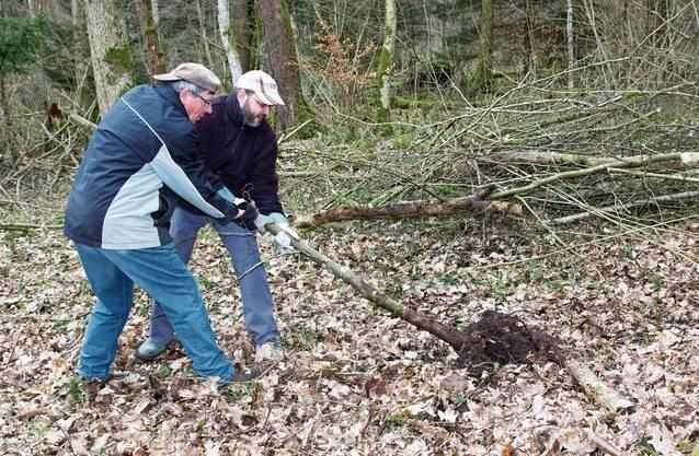 Die Helfer waren am Waldarbeitstag engagiert bei der Sache.