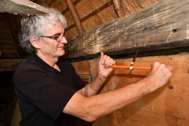 Jean-Pierre Hurni bohrt die Balken an und entnimmt 12 cm lange Holzkerne.