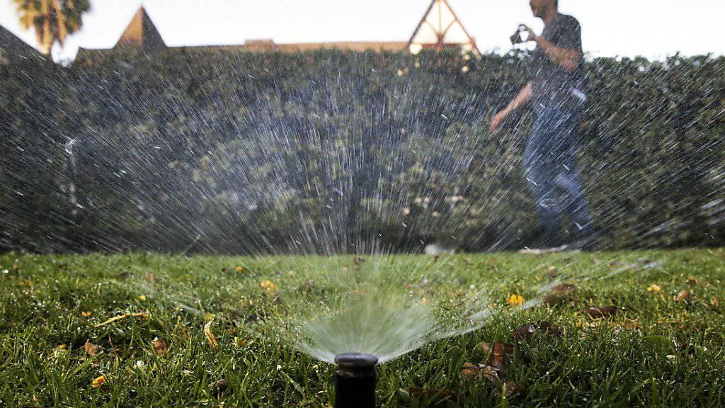Sprinkleranlage vor einem Haus im kalifornischen Nobelort Beverly Hills: Die US-Kommune spart zu wenig Wasser. (Symbolbild)