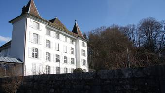 Die Südfassade des Königshofs, im Hintergrund das Waldstück