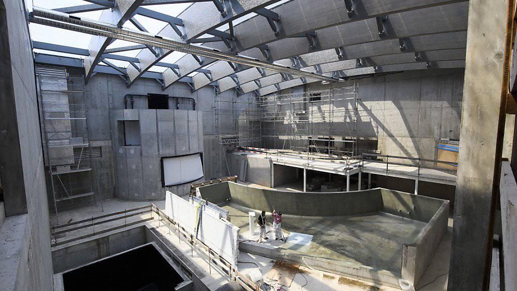 Ab Frühling 2017 werden im grössten Aquarium der Schweiz in Lausanne knapp 10'000 Fische und Reptilien zu sehen sein.