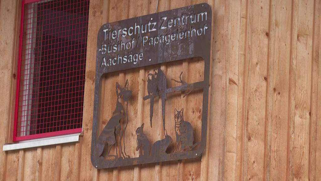 Neues Altersheim: Im Toggenburg eröffnet Papageienhof