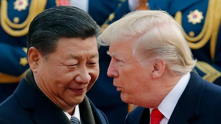 Die beiden Staatsführer der wichtigsten Wirtschaftsmächte Xi Jinping und Donald Trump.