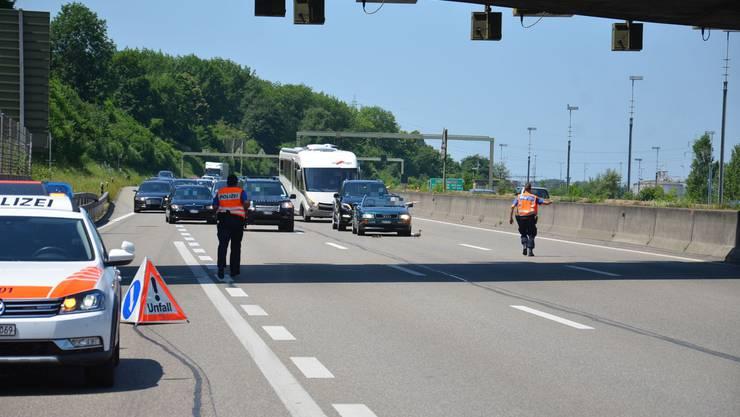 Die Baselbieter Polizei musste am Samstag auf der Autobahn A2 bei Pratteln den Verkehr komplett stoppen. Eine Enten-Familie machte einen Ausflug.
