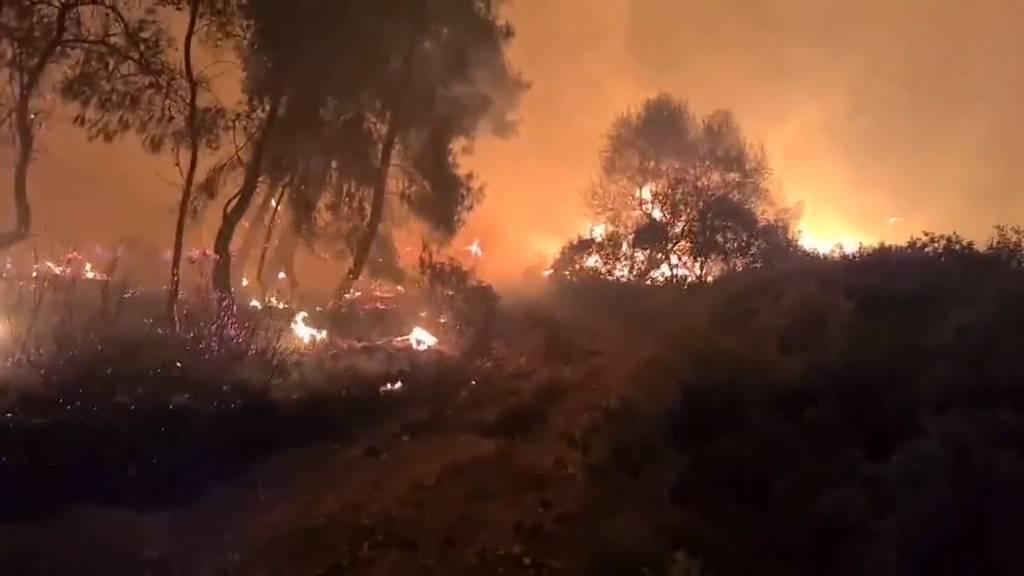 Grossbrand lodert westlich von Athen