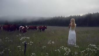 Magisch: Jonna ruft die Herde zu sich.