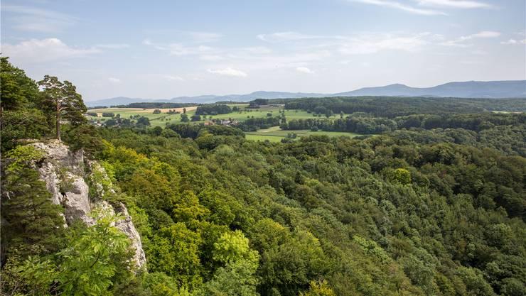 Blick von der Gempenfluh auf das Gempenplateau, eine der Altsiedellandschaften Europas. Thomas Ulrich