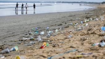 Kleine Plastikteilchen verschmutzen Meere, Seen, Gewässer und Böden. Doch ihre Folgen sind unerforscht.