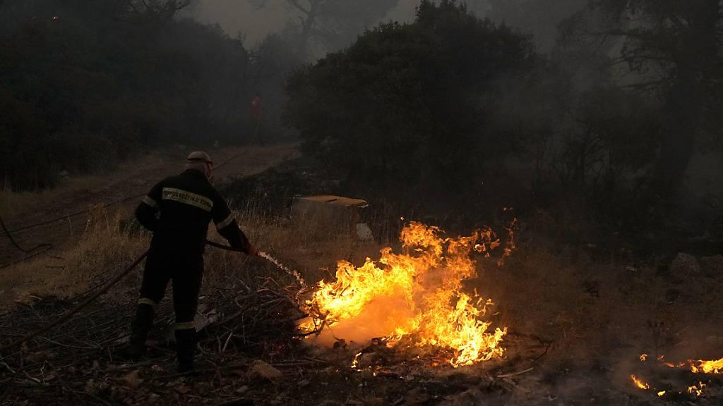Ein Feuerwehrmann löscht ein Feuer während eines Waldbrandes in der Region Vilia etwa 60 Kilometer nordwestlich von Athen (18.08.2021). Ein großer Flächenbrand nordwestlich der griechischen Hauptstadt hat am dritten Tag große Teile eines Kiefernwaldes verschlungen und bedroht ein großes Dorf. Foto: Thanassis Stavrakis/AP/dpa