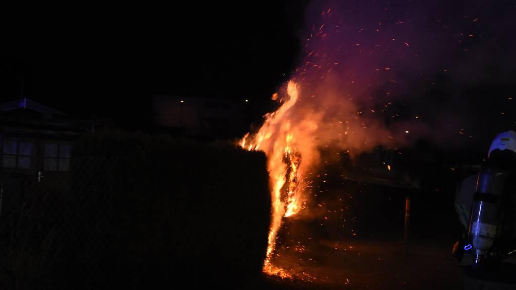 Hecke in Flammen aufgegangen – War es Brandstiftung?