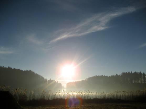 Türlersee im Sonnenlicht.
