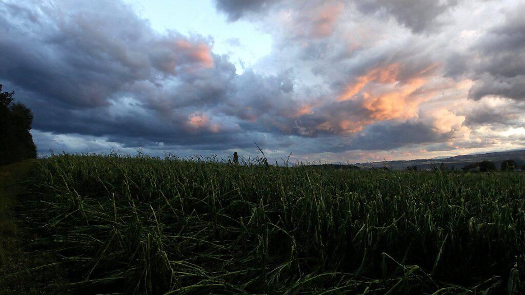 Sommer-Unwetter verursachen rekordverdächtig grosse Schäden