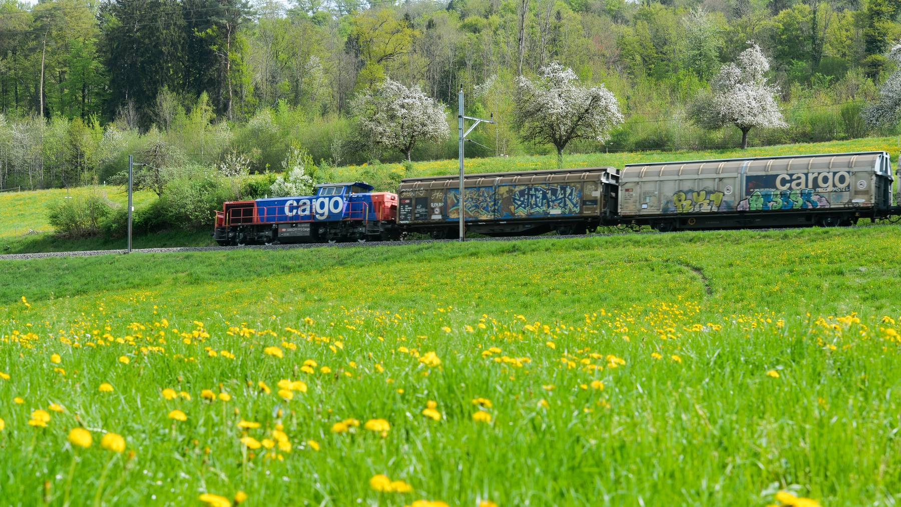 Der Gütertransport soll noch mehr auf den Schienen stattfinden.