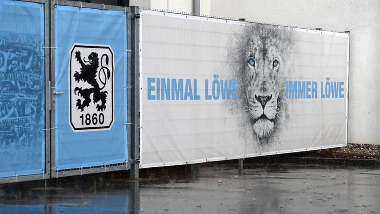 Die Münchner Löwen fangen wieder ganz unten an.