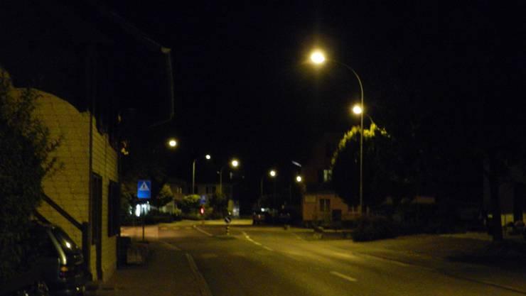 Insgesamt 87 alte Leuchten sollen heuer durch neue und dimmbare Led-Strassenleuchten ersetzt werden.
