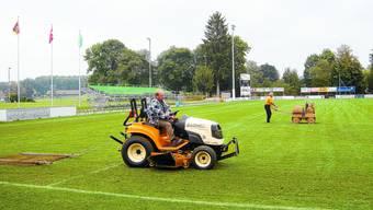 Rankmatte: Platzwart Walter Künzi (auf dem Traktor) bereitet den Rasen für das Cupspiel vor. Im Hintergrund die Zusatztribüne mit 225 Plätzen. Tg