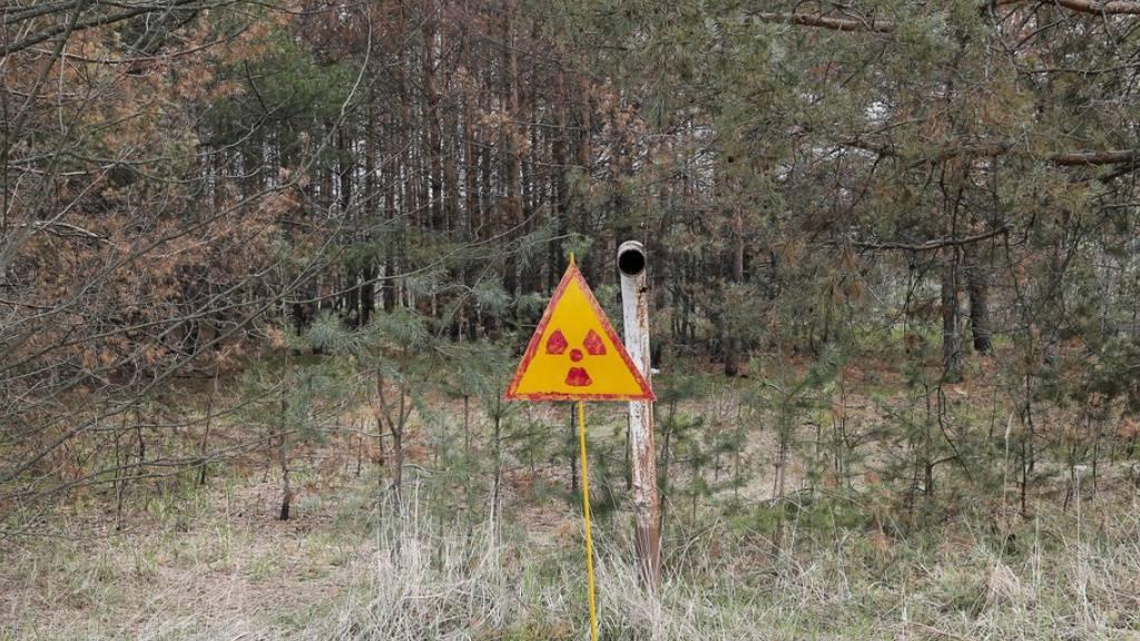 Warnschild in der Nähe des havarierten Kernreaktors in Tschernobyl. Trotz der Nuklearkatastrophe von 1986 plädieren mehrere osteuropäische Regierungen für Kernkraft als zwar riskante, aber emissionsarme Methode der Energiegewinnung. (Symbolbild)