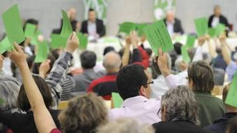 Auch Grüne steigen ins Rennen um den Bundesratssitz (Archiv)