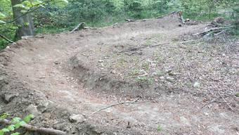 Unbekannte bauten illegalerweise einen Bike-Trail im Siggenthaler Wald.
