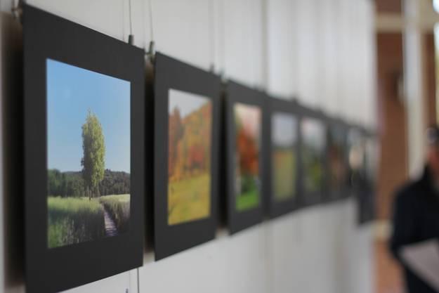 Die meisten eingereichten Bilder sind Aufnahmen von der schönen Natur des Limmattals