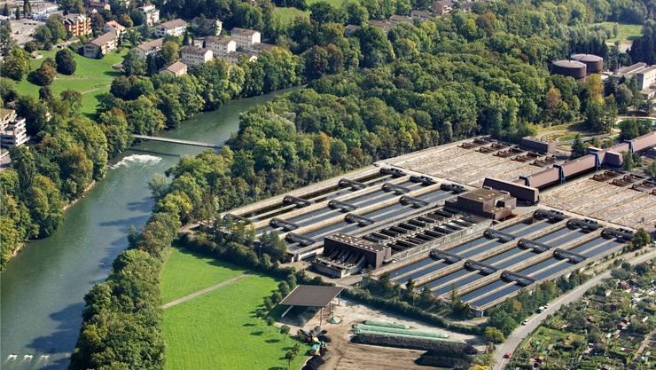 Die Verwertung des Bioabfalls erfolgt auf dem Vergärwerk Werdhölzli.