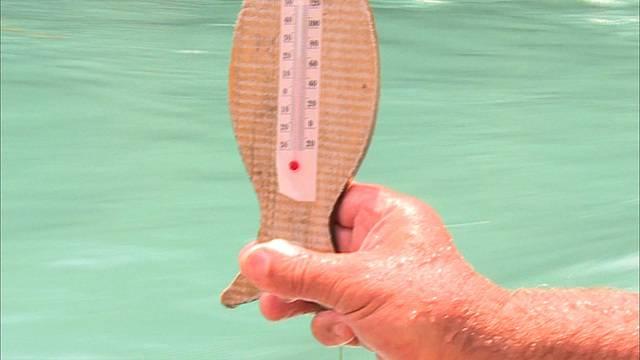 Hitzewelle macht Fischen zu schaffen