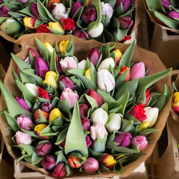 Was macht Stadtpräsidentin Corine Mauch bloss mit all diesen Blumen