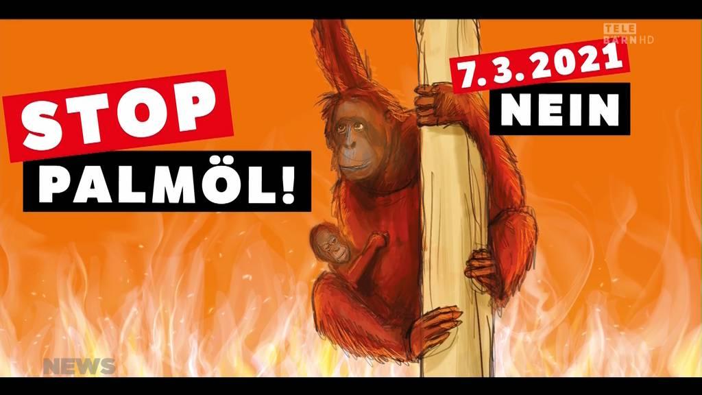 Palmöl-Kampagne: «Nein»-Komitee lanciert Abstimmungskampf gegen Abkommen mit Indonesien