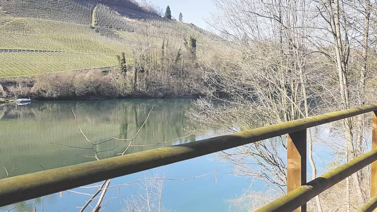 Der Blick vom idyllischen Uferweg auf die Rebhänge von Rüdlingen wirkt entschleunigend.