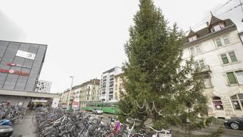 Der «Armeleute-Baum» ist im Gundeli derzeit das Top-Thema.