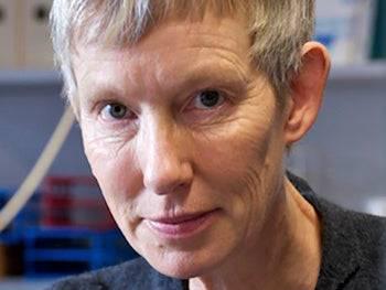 Margit Schwikowski, Forscherin.
