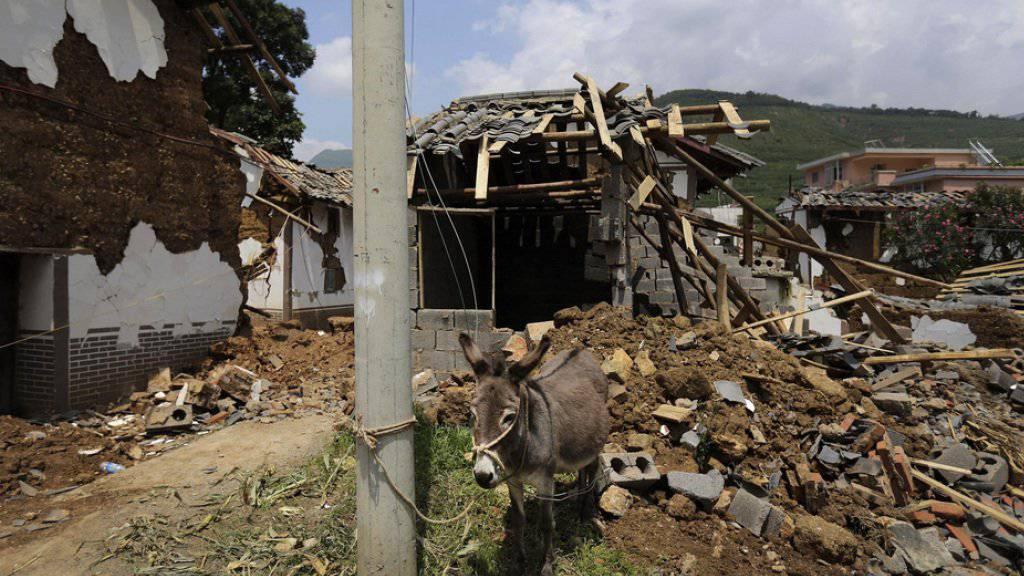 Mindestens vier Tote, 30 Verletzte und eingestürzte Häuser - Ein schweres Erdbeben hat die chinesische Provinz Sichuan erschüttert. (Symbolbild)