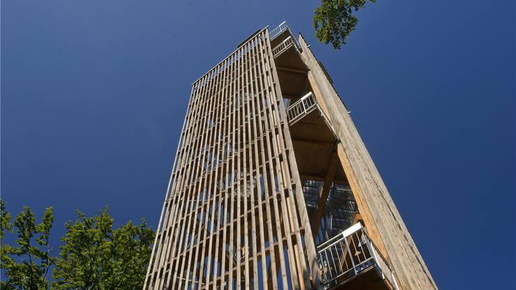 Auf dem höchsten Punkt hat der Trägerverein 2010 zur Freude vieler Besucher den filigranen Holzturm errichtet.