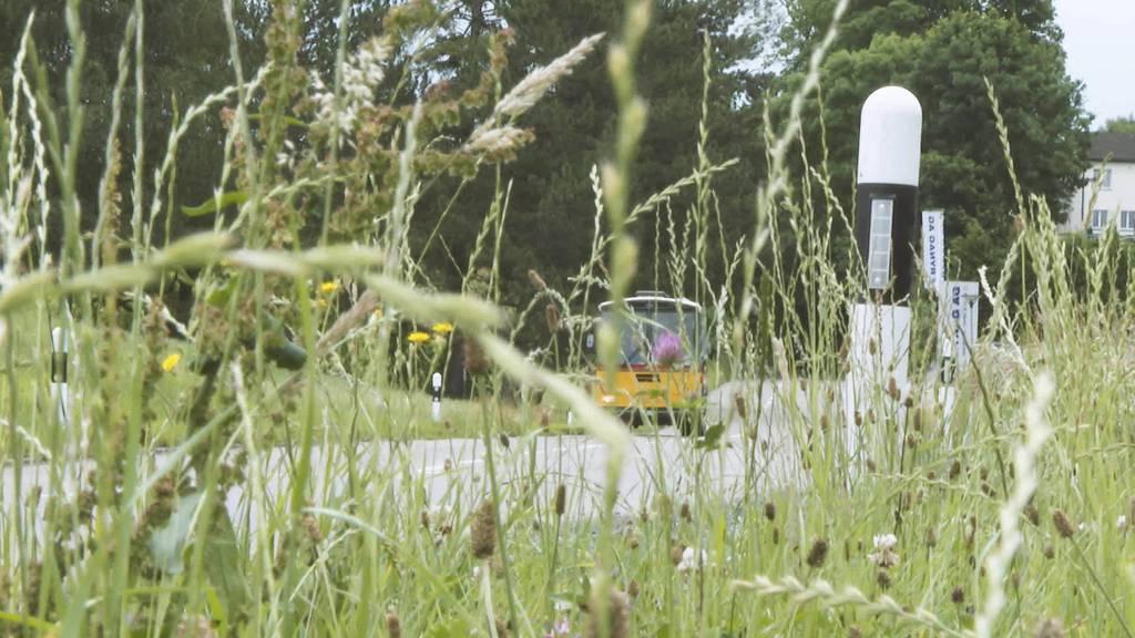 Umbau: Dieses alte Saurer-Postauto ist jetzt ein Partybus