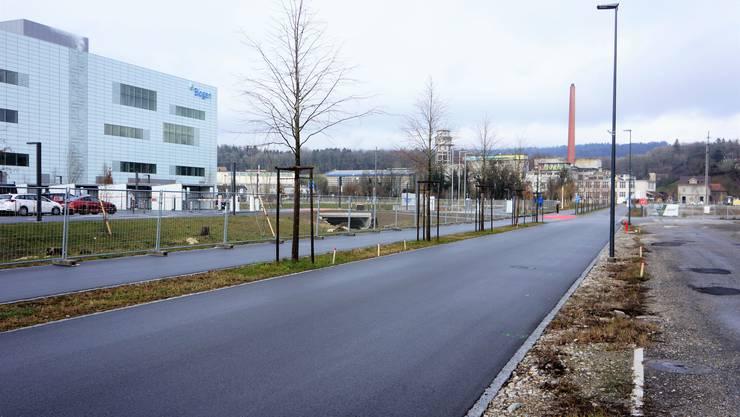 Biogen auf dem Attisholzareal war der grosse Coup in Sachen kantonaler Standortpolitik der jüngeren Vergangenheit.