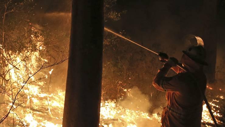 Schwere Buschbrände toben in Ulladulla bei Sydney