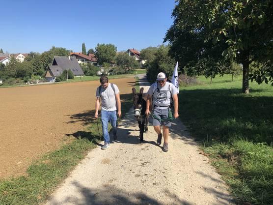 Heute werden unsere Esel von Redaktor Oliver Varga begleitet.