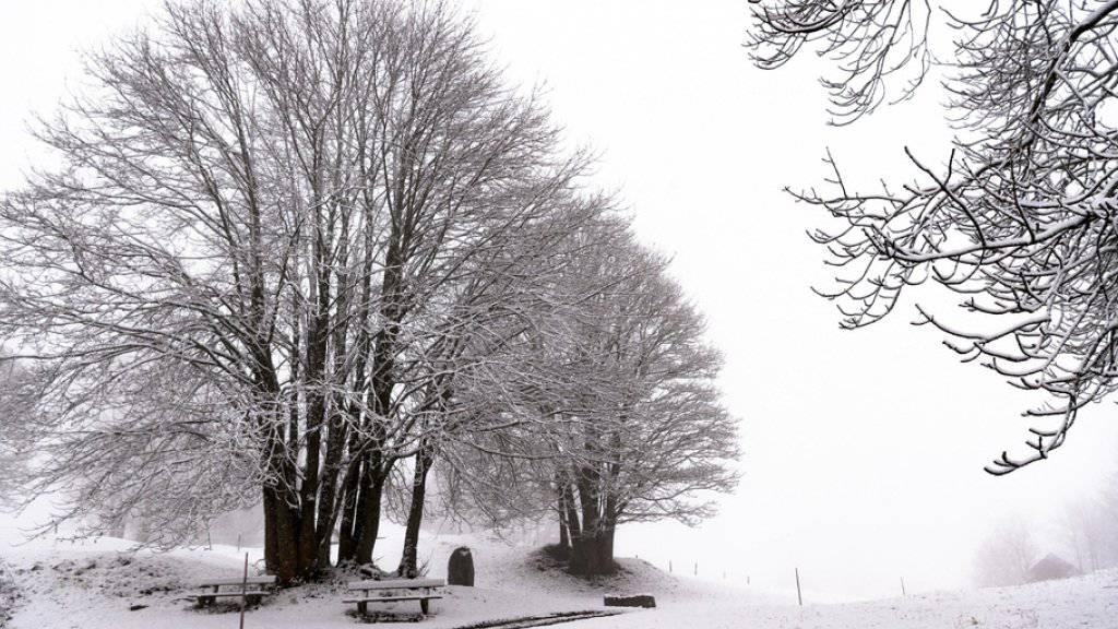 Der erste Wintereinbruch der Saison brachte schneebedeckte Landschaften.