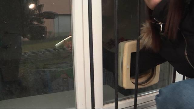 Einbruch durch das Katzentürchen