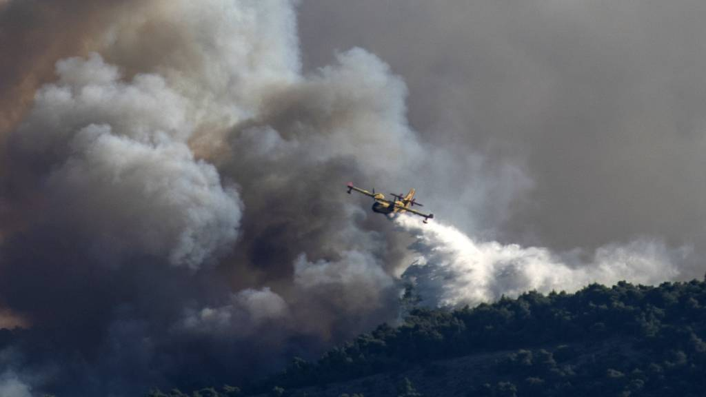 Zahlreiche Wald- und Buschbrände ausgebrochen