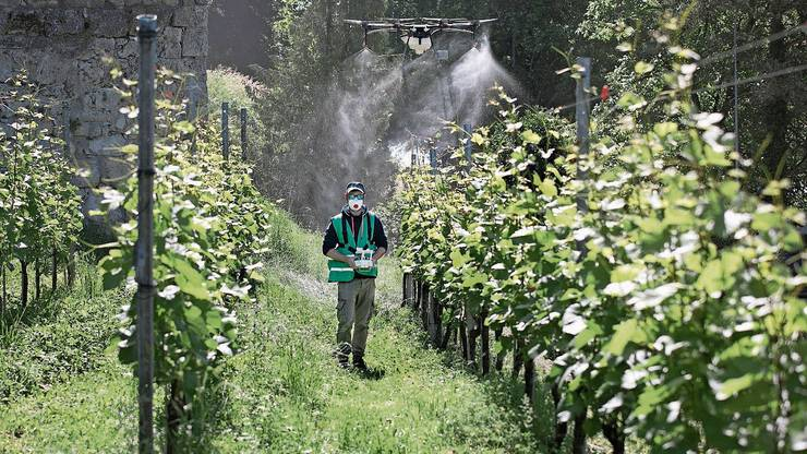Die Drohne mit einen 10-Liter-Tank wird von Profis gesteuert.